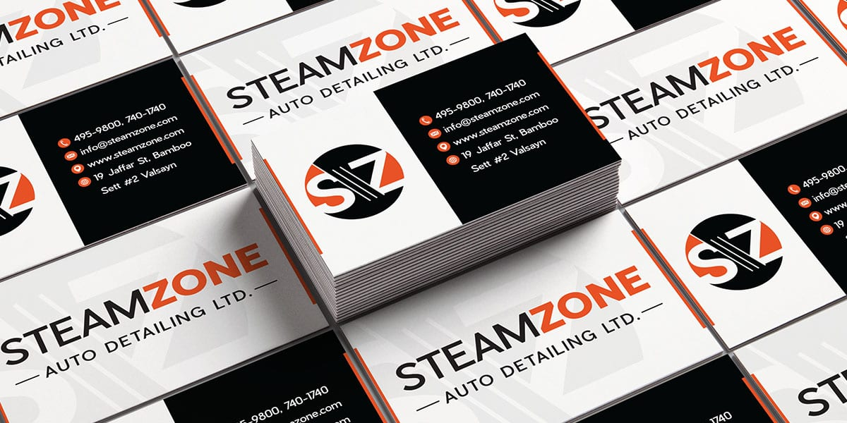 logo-SteamZoneBusiness Card